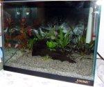 akvarijum-Strahinja.jpg