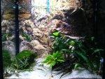 akvarijum 1.jpg
