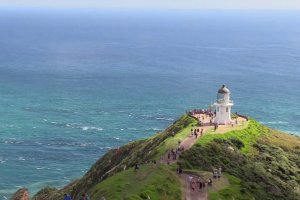 Far north tour - Cape Reinga