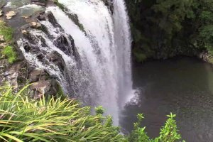 Far north tour - Otuihau Whangarei Falls