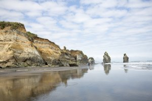 Three Sisters and the Elephant Rock - Tongaporutu