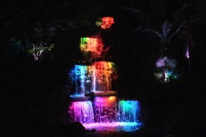 Pukekura Falls - TSB Festival of Lights